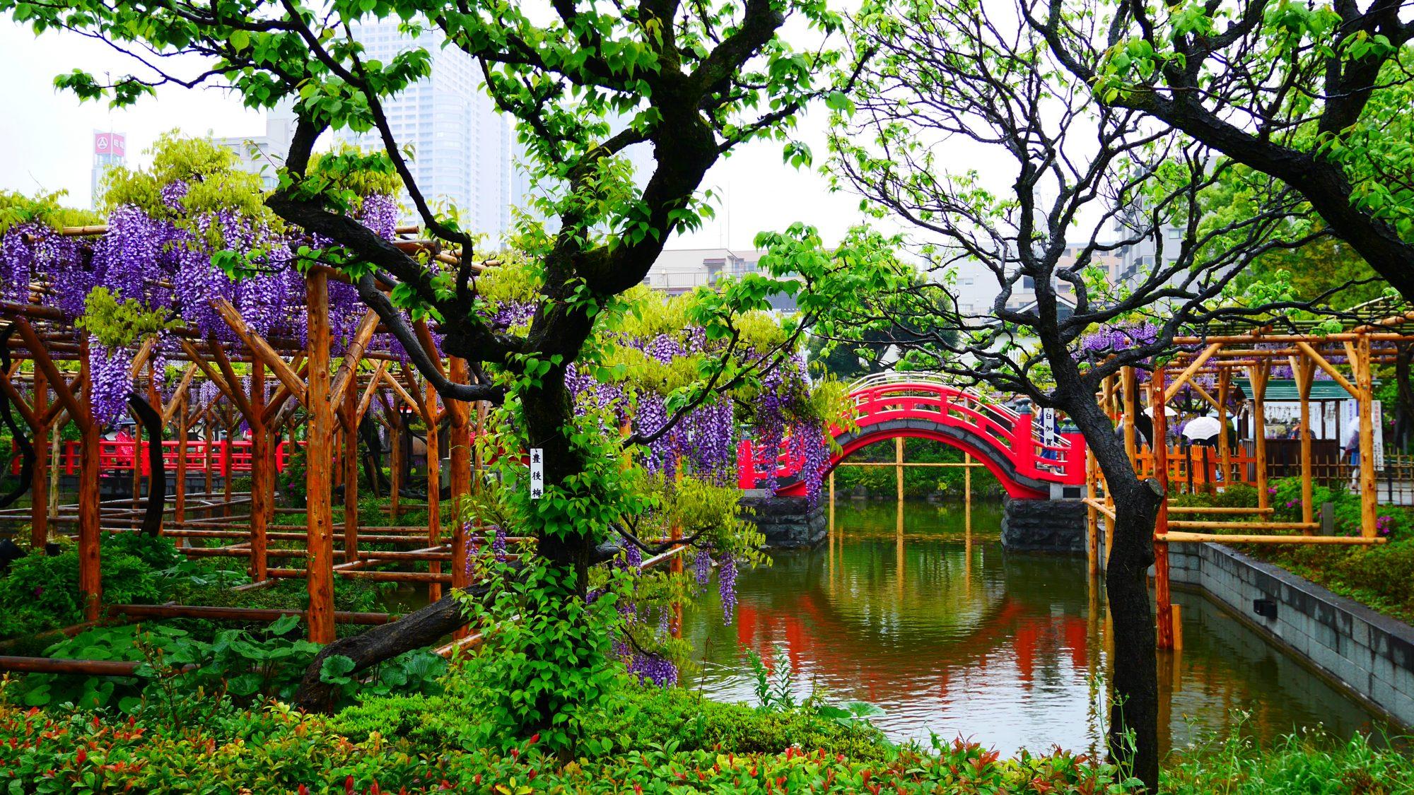 A wisteria-filled utopia